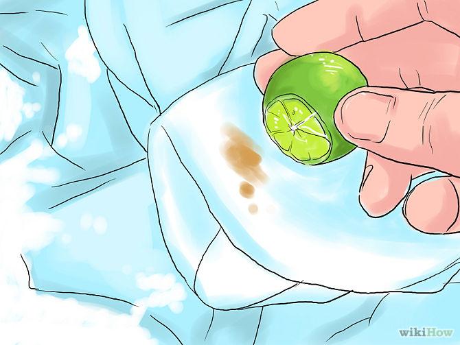 ilustracion, tela, ropa, limon